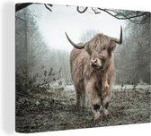 MuchoWow Schilderij - Schotse Hooglander in Herfst - Canvas - 80x60cm