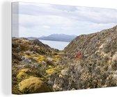 Typische droge gewassen in de heuvels van Nationaal park Tierra del Fuego Canvas 60x40 cm - Foto print op Canvas schilderij (Wanddecoratie woonkamer / slaapkamer)