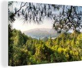 Groene berglandschap van het Nationaal park Caldera de Taburiente Canvas 60x40 cm - Foto print op Canvas schilderij (Wanddecoratie woonkamer / slaapkamer)
