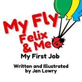 My Fly Felix & Me: My First Job