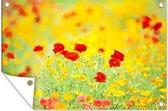 Gele en rode papavers tuinposter 120x80 cm - Tuindoek / Buitencanvas / Schilderijen voor buiten (tuin decoratie)