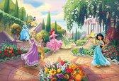 Komar Disney Princess Park Fotobehang 368x254cm 8-delig
