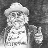 Bernard Jolink Post Normaal
