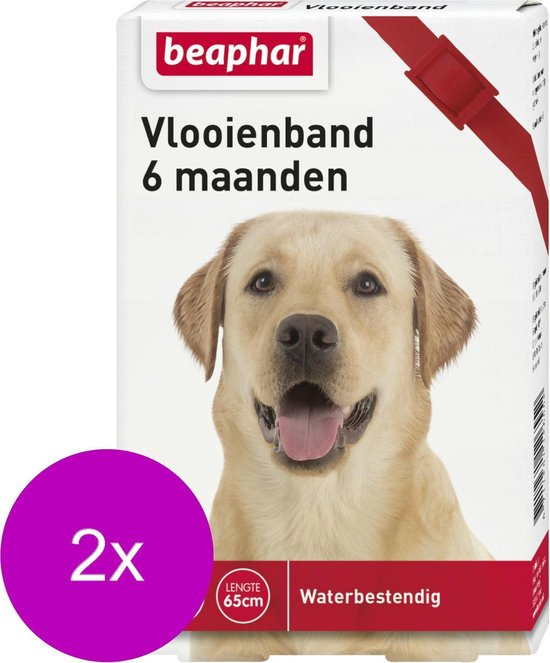 Beaphar Vlooienband 6 Mnd Hond 65 cm - Anti vlooienmiddel - 2 x Rood