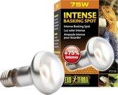 Exo Terra Basking - Spot Lamp - Terrarium Verlichting - 75W