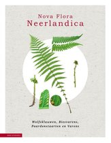 Nova Flora Neerlandica  -   Nova Flora Neerlandica