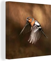 Canvas Schilderijen - Mannelijke vink vliegt weg - 50x50 cm - Wanddecoratie