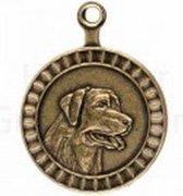 Hondenpenning - Rashond Labrador