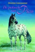 Gouden paarden  -   De zoektocht van Pico