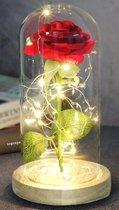 Beauty and the Beast Zijde Roos in Glas Stolp Rose Kunstroos - Cadeau voor Vrouw - Vriendin - Mama - Oma - Bruiloft / Verloving / Verjaardag - Belle en het Beest - Glazen - Rood - 22 CM