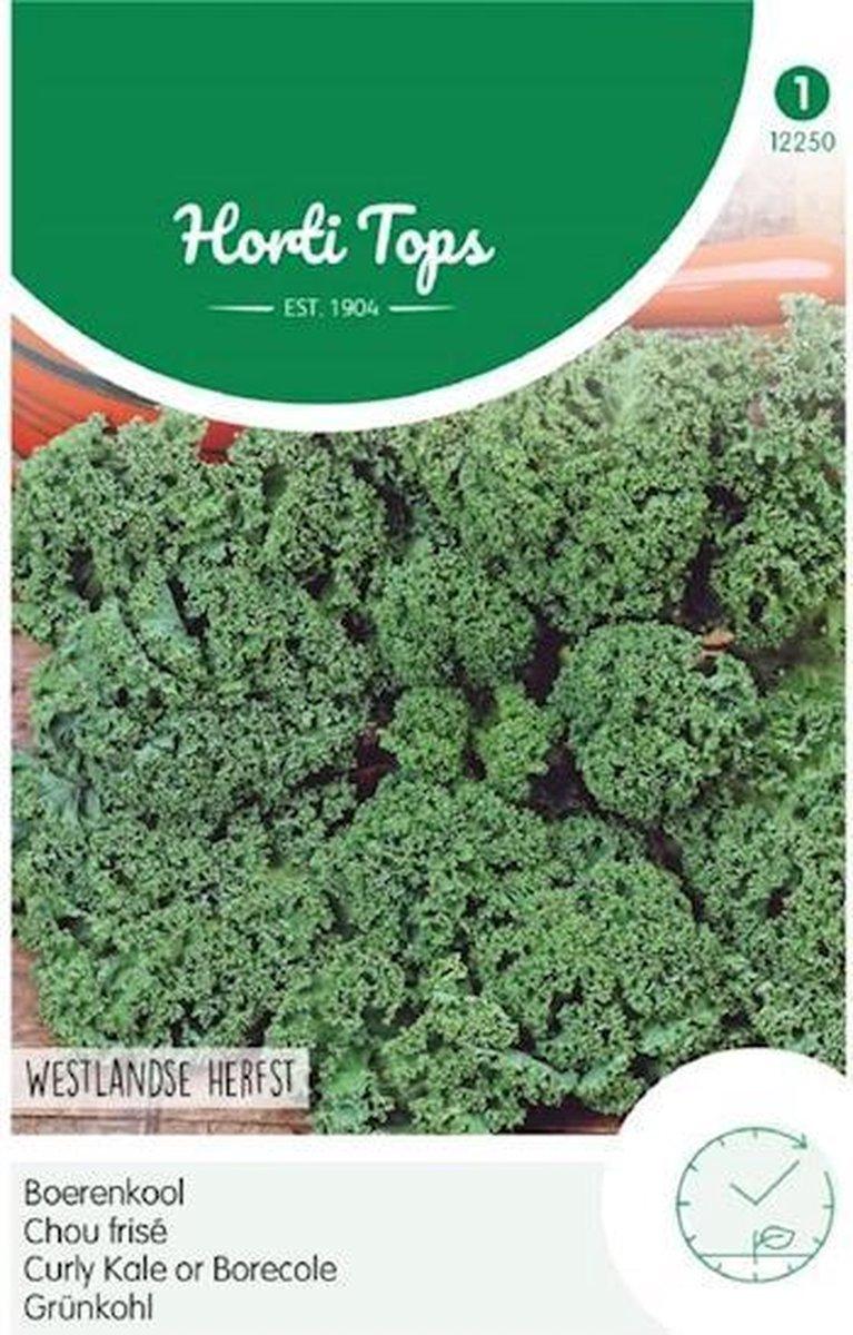 Hortitops Zaden - Boerenkool Westlandse Herfst, Laat Type