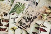 Kaartenset Old Look - 30 kaarten - Vintage kaarten