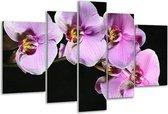 Glasschilderij Orchidee | Zwart, Paars, Wit | 170x100cm 5Luik | Foto print op Glas |  F001122