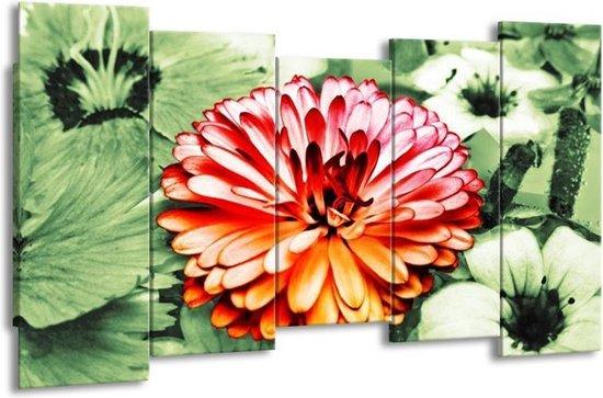 Canvas schilderij Bloem | Rood, Groen, Wit | 150x80cm 5Luik
