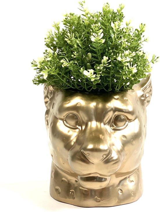 Bol Com Lucy S Living Luxe Bloempot Luipaard Goud O 20 X 20 Cm Decoratie Woonaccessoires