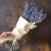 Gedroogde Lavendel | Bosje Lavendel | Droogbloemen | BloomitUp