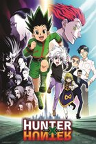 Hunter x Hunter Japanse  anime manga serie Gon Freecss poster 61x91.5cm.
