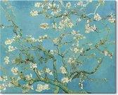 Canvas Schilderij Amandelbloesem - Vincent van Gogh - 150x100 cm