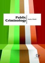 Public Criminology