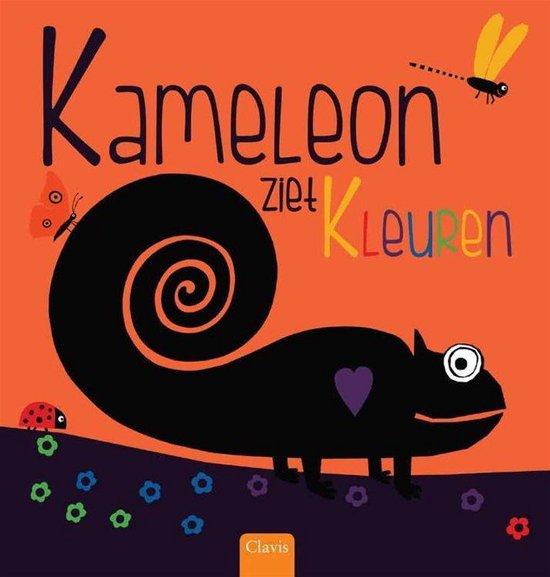 Kameleon ziet kleuren - Anita Bijsterbosch   Readingchampions.org.uk