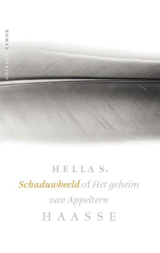 Schaduwbeeld of Het geheim van Appeltern - Hella S. Haasse |