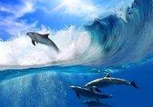 Fotobehang Dolfijnen XXL - behangpapier - 368 x 254 cm