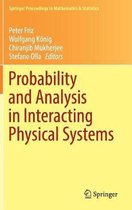 Probability and Analysis in Interacting Physical Systems