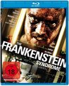 The Frankenstein Syndrom (Blu-ray)
