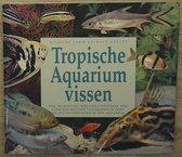Tropische aquariumvissen