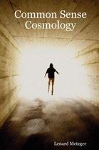 Common Sense Cosmology
