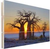 Afrikaanse baobabs bij een fascinerende zonsopgang op het Kubu-eiland Vurenhout met planken 90x60 cm - Foto print op Hout (Wanddecoratie)