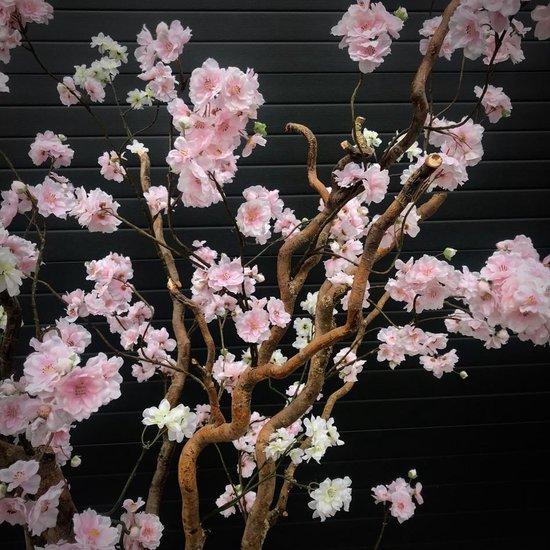 Verrassend bol.com   SetaFiori 190cm hoge kunst bloesemboom JR-75