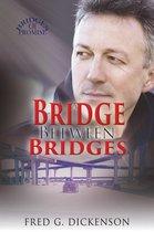 Omslag A Bridge Between Bridges