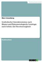 Symbolischer Interaktionismus nach Blumer und Phänomenologische Soziologie nach Schütz. Ein Theorienvergleich