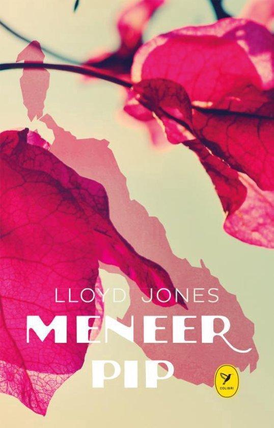Meneer Pip - Lloyd Jones pdf epub