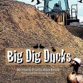 Big Dig Ducks