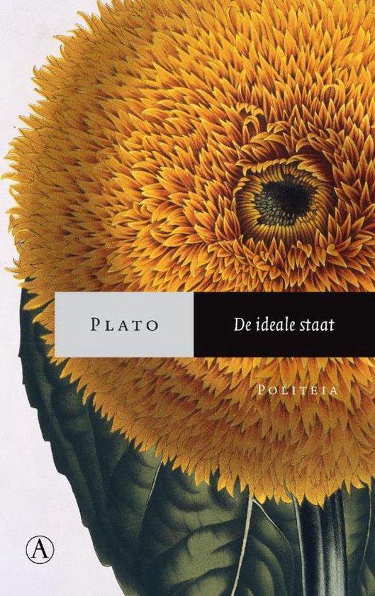 Boek cover De ideale staat van Plato