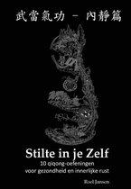 Boek cover Stilte in je Zelf van Roel Jansen