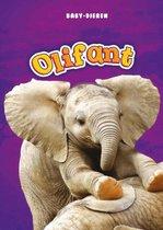 Baby-dieren  -   Olifant