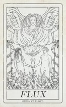Boek cover Flux van Orion Carloto (Paperback)