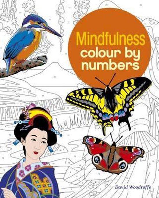 Boek cover Colour by Number van Else Lennox (Paperback)