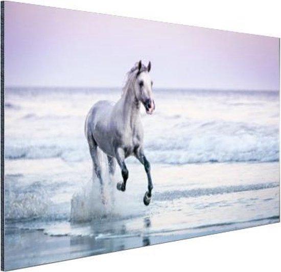 Paard op het strand Aluminium 120x80 cm - Foto print op Aluminium (metaal wanddecoratie)