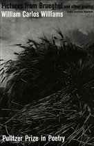 Boek cover Pictures from Brueghel: Pulitzer Prize, Poetry van William Carlos Williams