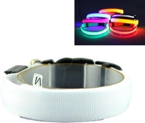 LED Halsband RGB XS