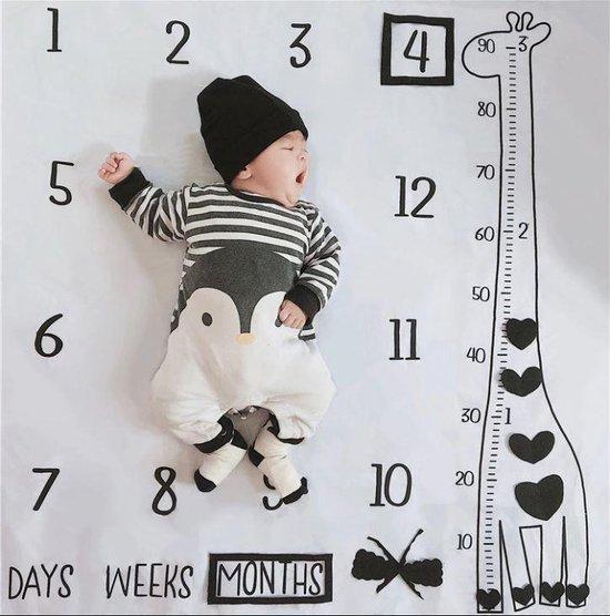 Afbeelding van The silly giraffe Mijlpaaldeken van zacht fleece incl. frames en pijl - baby mijlpaal deken