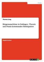 Burgerausschusse in Esslingen - Theorie und Praxis kommunaler Partizipation