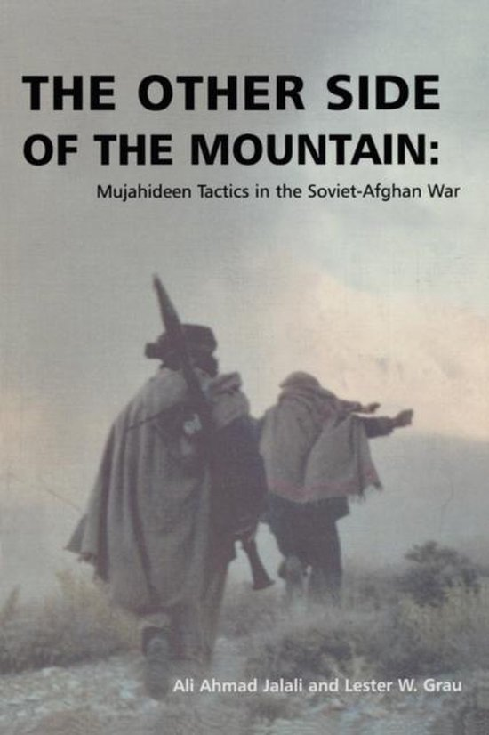 Boek cover The Other Side of the Mountain van Ali Ahmad Jalali (Paperback)