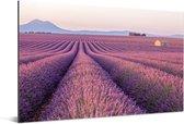 Uitgerekt paars lavendelveld Aluminium 180x120 cm - Foto print op Aluminium (metaal wanddecoratie) XXL / Groot formaat!