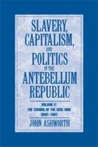 Slavery, Capitalism and Politics in the Antebellum Republic
