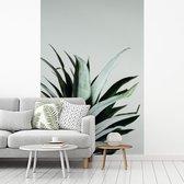 Fotobehang vinyl - Rustieke ananasbladeren breedte 215 cm x hoogte 320 cm - Foto print op behang (in 7 formaten beschikbaar)
